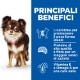 sp-canine-science-plan-adult-small-and-miniature-light-original-dry